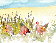 Prairie Chickens Prints - Free Range Print by Carolyn Doe