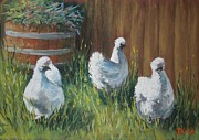 Chicken Pastels - Free Range Silkies by Dianne  Ilka