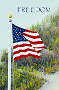 Usa Flags Prints - Freedom Print by Gerlinde Keating - Keating Associates Inc