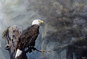 American Bald Eagle Painting Prints - Freedom Haze Print by Steve Goad