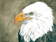 American Eagle Paintings - Freedom by Kimberly Lavelle