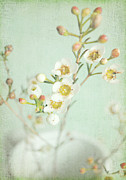 Blossom Digital Art Prints - Freesia Blossom Print by Lyn Randle