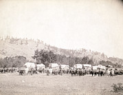 1880s Framed Prints - Freighting In The Black Hills. Several Framed Print by Everett