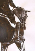 Dressage Drawings - Fremantle  by Adrian McMillan