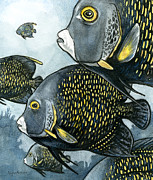 Angelfish Paintings - French Angelfish by Alyssa Parsons