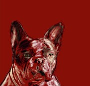 Puppy Mixed Media - French bulldog by Donna Johnson