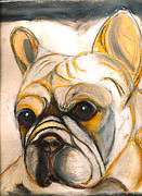 French Bulldog Prints Prints - French Bulldog Drawing Print by Ania M Milo