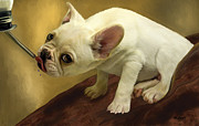 Puppy Digital Art Metal Prints - French Bulldog  Metal Print by Thanh Thuy Nguyen
