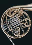 Wind Instrument Photos - French Horn by Datacraft Co Ltd