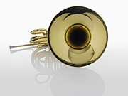 Wind Instrument Photos - French Horn by Fuse