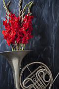 Red Gladiolus Photos - French horn with gladiolus by Garry Gay