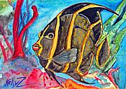 Angelfish Paintings - French Kiss-Juvenile French Angelfish by Kelly     ZumBerge