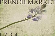 Purple Floral Posters - French Market Series F Poster by Rebecca Cozart