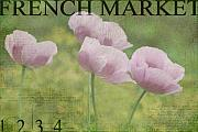 Poppies Art - French Market Series P by Rebecca Cozart