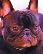 French Bulldog Paintings - Frenchie by Jai Johnson