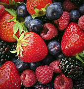 Blackberry Photo Posters - Fresh berries Poster by Elena Elisseeva