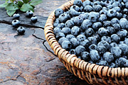 Blueberry Art - Fresh Blueberries by Stephanie Frey