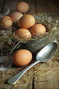 Protein Prints - Fresh brown eggs in old tin container with spoon  Print by Sandra Cunningham