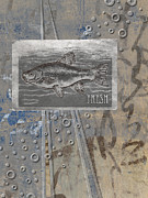 Photomontage Posters - Fresh Fish Poster by Carol Leigh