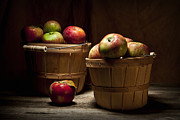 Bushel Basket Framed Prints - Fresh From the Orchard III Framed Print by Tom Mc Nemar