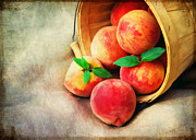 Edible Framed Prints - Fresh Peaches Framed Print by Darren Fisher