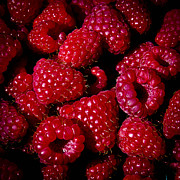 Raspberry Red Prints - Fresh Picked Raspberries Print by David Patterson