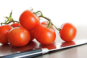Ingredient Framed Prints - Fresh ripe tomatoes on stainless steel counter Framed Print by Sandra Cunningham