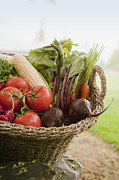Corns Photos - Fresh Vegetables in a Basket by Shannon Fagan