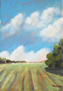 Farmland Painting Originals - Freshly Cut Hay Field by Todd Bandy
