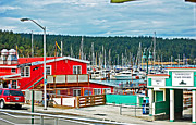 Randall Templeton Art - Friday Harbor by Randall Templeton