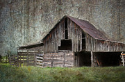 Friendly Barn Print by Lisa Moore