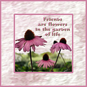 True Friendship Framed Prints - Friends Forever Framed Print by Daryl Macintyre