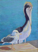 Pelican Pastels Framed Prints - Friends Framed Print by Nancy Jolley
