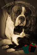Dog And Cat Posters - Friendship is the Greatest Gift of All Greeting Poster by DigiArt Diaries by Vicky Browning