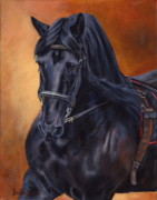Friesian Paintings - Friesian by Bobbie Deuell