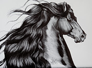 Horse Drawings Prints - Friesian Head Shot Print by Cheryl Poland