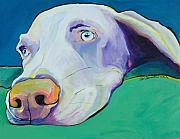 Contemporary Animal  Acrylic Paintings - Fritz by Pat Saunders-White            