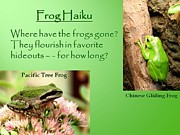 Digital Art - Frog Haiku by Laurel Talabere