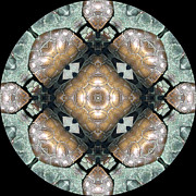 Black Background Art - Frog Mandala 4 by Pam Blackstone
