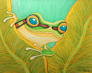 Frog Drawings - Frog Peeking Out by Nick Gustafson