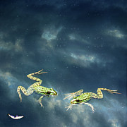 Floating In Water Prints - Frogs Print by Christiana Stawski