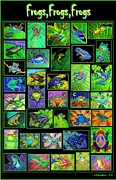 Lily Digital Art Framed Prints - Frogs Poster Framed Print by Nick Gustafson