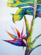 Strelitzia Painting Posters - From my Window 2 Poster by Julia Forman