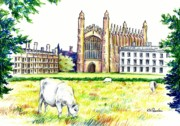 Cambridge Drawings - From the Backs by K M Pawelec