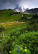 Mt Rainier Framed Prints - From the Top Framed Print by Mike  Dawson