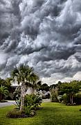 Palm Tree Greeting Cards - Frontal Clouds by Dustin K Ryan