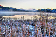 Water Scenes Metal Prints - Frosted Fog Metal Print by Emily Stauring