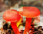 Mushroom Digital Art - Frosted Mushrooms by Smilin Eyes  Treasures