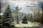 Snowy Trees Digital Art - Frosty Christmas Card by Lois Bryan