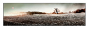 Soil Photo Posters - Frosty Landscape Poster by Mal Bray